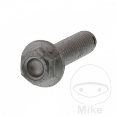 Brake disc bolt JMT