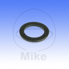 Washer for kickstart shaft JMT