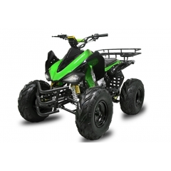 KETURRATIS SPEEDY QUAD 10 MANUAL+RG 250CC