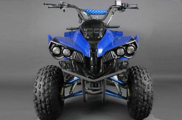 6f8f69b2590 MOTORCYCLES AND QUADS : QUAD WARRIOR LIGHT SEMI-AUTOMATIC+RG 125CC